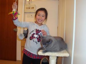 TaiBo the Cat 008