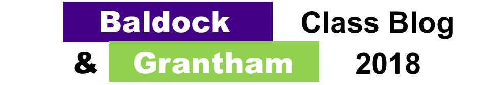 Baldock & Grantham Class Blog